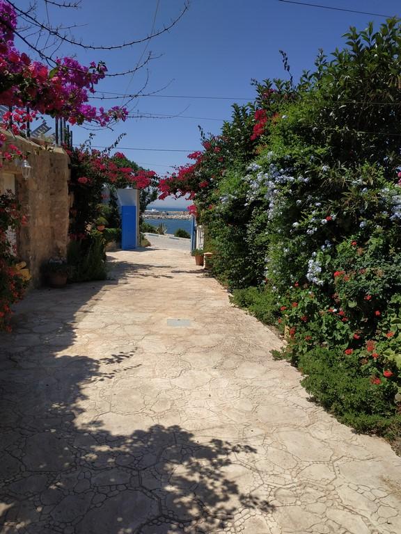 Vue couloir jardin porte ouverte (Copier)